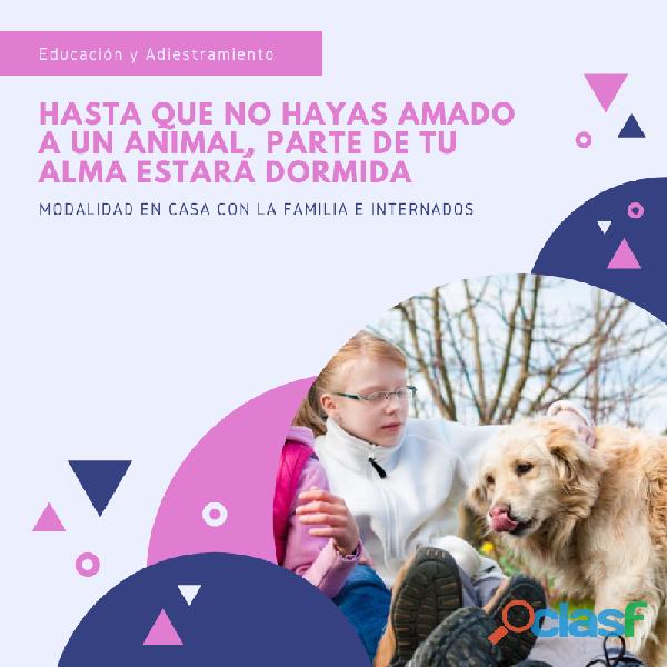 Educacion y Adiestramiento Canino 1