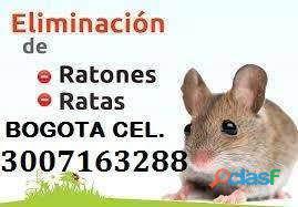 Control de roedores bogota 3007163288