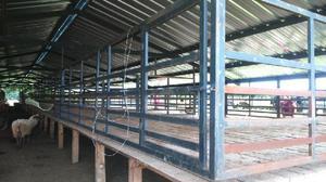 Vendo instalaciones para corral de aves, cerdos, etc. -