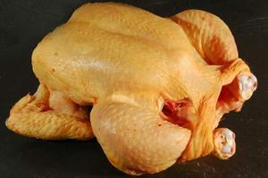 Pollos campesinos - manizales