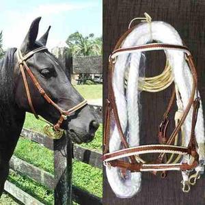 Aperos de cabeza en cuero para caballos