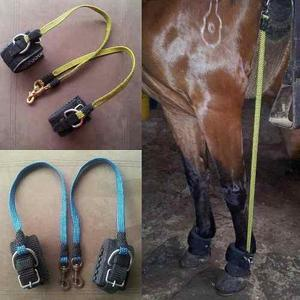 Elasticos para caballos