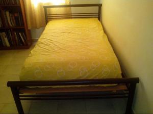 Cama sencilla en tubo clasf for Colchon cama sencilla