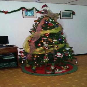 Rbol navideño - funza
