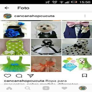 Ropa y accesorios para mascotas. - cúcuta