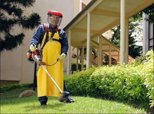 Servicio de jardinería, limpieza y podas - barranquilla