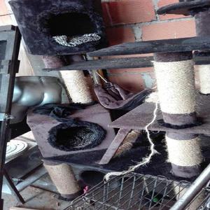 Gimnasio gato precio clasf for Gimnasio 02 granada precio