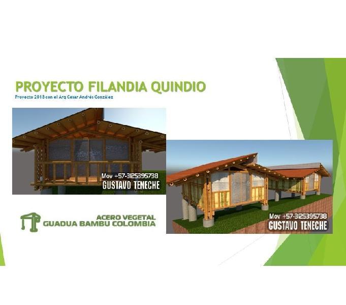 Construccion de casas y cabañas en guadua bambu