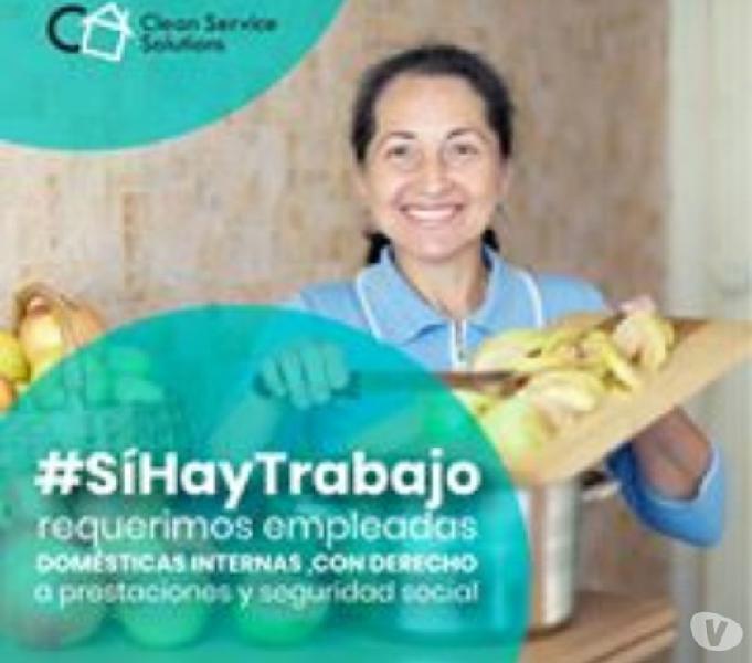 Personal domestico interno - clean service solutions