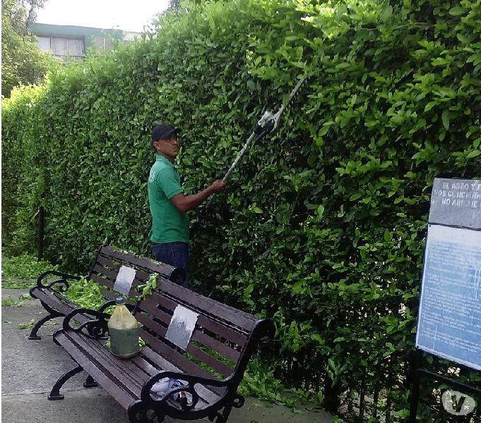 Aseo general mantenimiento de jardineria