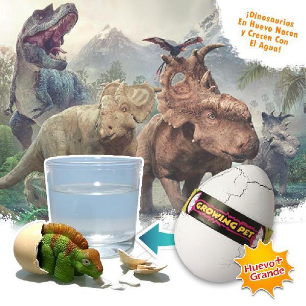 Huevos dinosaurio grandes nacen y crecen con agua juguete de