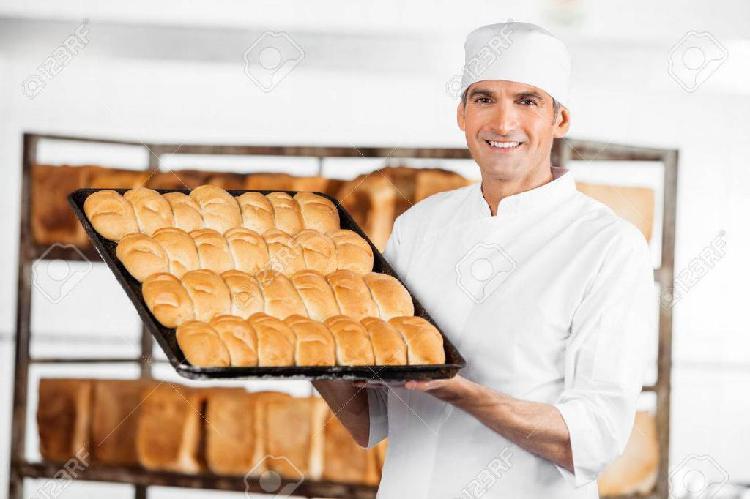 Necesito panadero