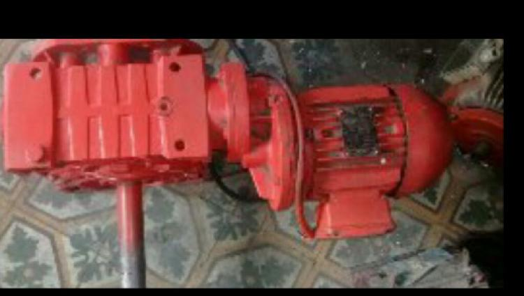 Vendo motoreductor trifasico 12 rpm