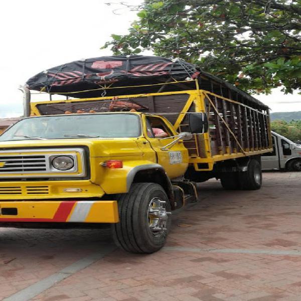 Camion Chevrolet C70 Modelo 81