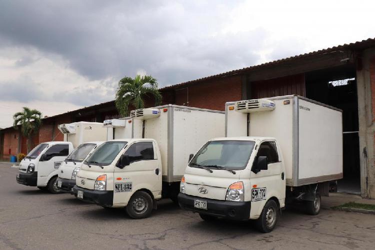 Hyundai h100 porter furgon refrigeración y congelación