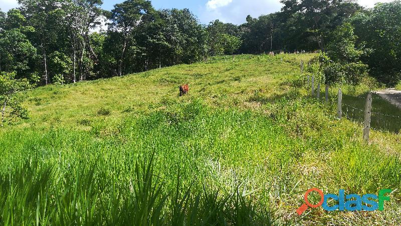 Vendo lotes planos con escritura 30 millones en bucaramanga