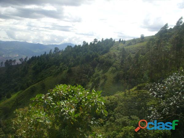 ECOTURISMO Y GLAMPING con Vista Panorámica de Medellín a 25 Min. del Poblado 8