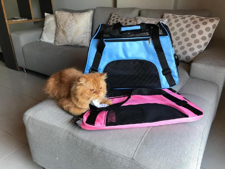 Portador de mascotas