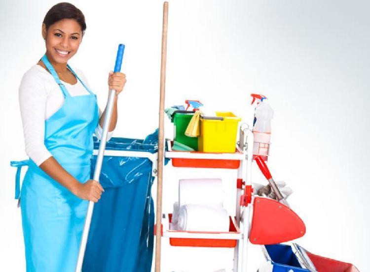 Realizo servicios de limpieza x dias