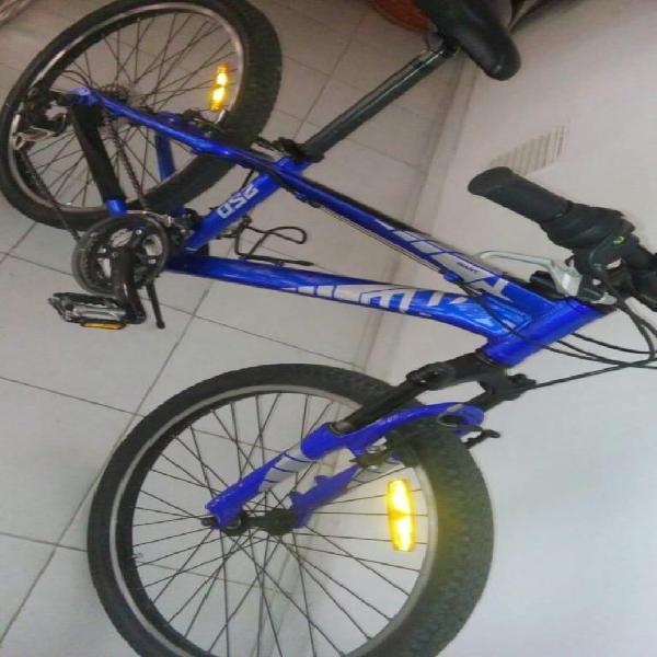 Bicicleta giant rin 24