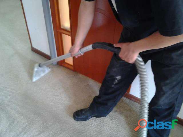 Mr. cleaning lavado de tapetes 3203819674