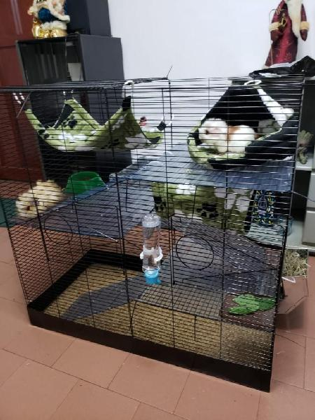 Jaulas para conejos, roedores medianos.