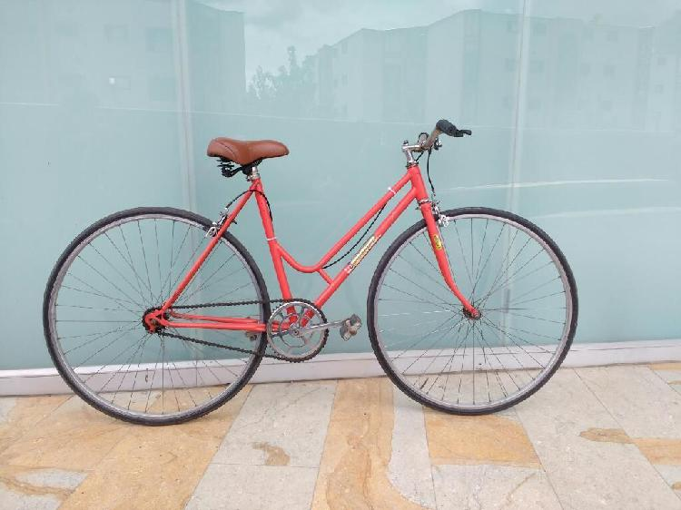 Bicicleta clásica playera