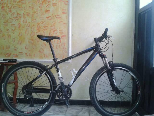 Bicicleta raleigh elite 01 (negociable)
