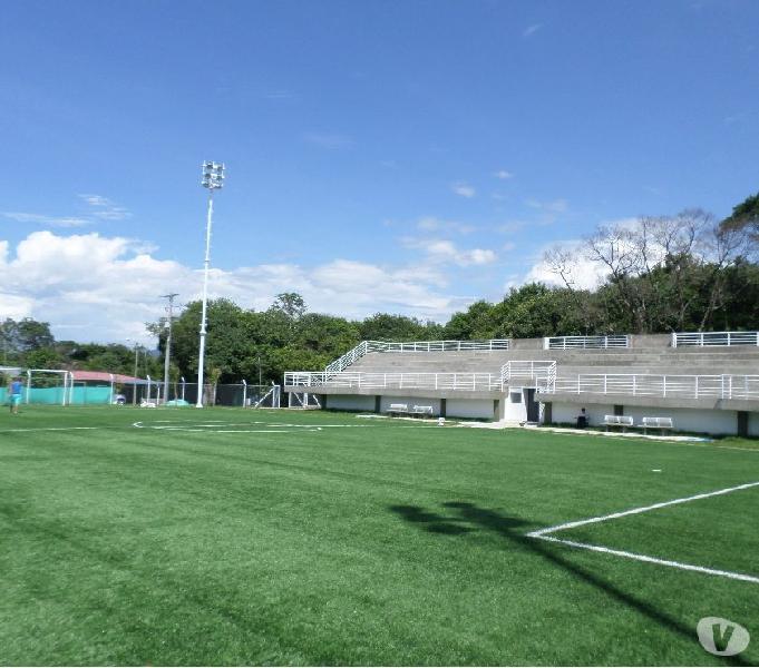 Gramas sintéticas futbol y paisajismo - grama sport