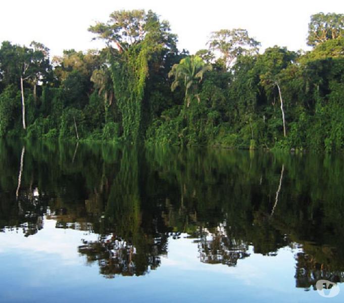 Vendo terreno con recursos naturales valorización del 100%