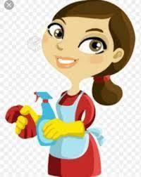Servicio de aseo general y planchado de ropa por dias