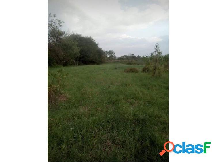 Se venden 2 hectáreas vía el sabanal