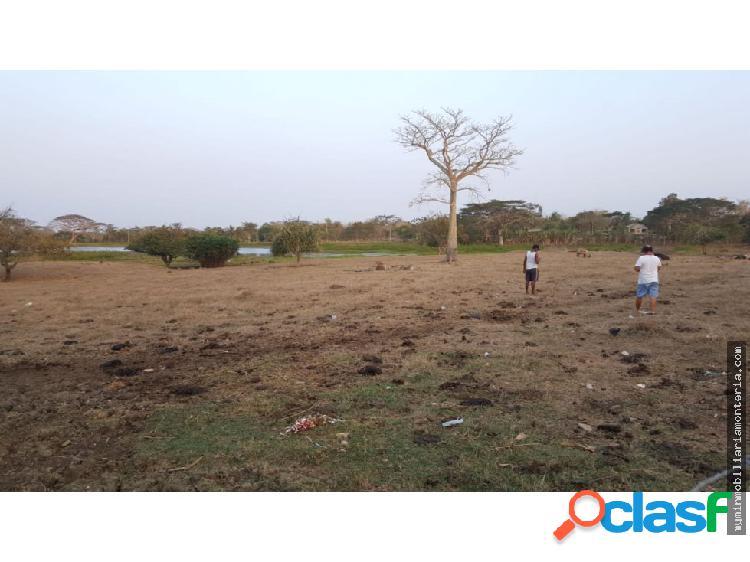 Vende lote de 4 hectáreas vía coveñas