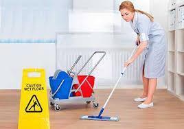 Servicios generales de aseo, limpieza y jardineria en