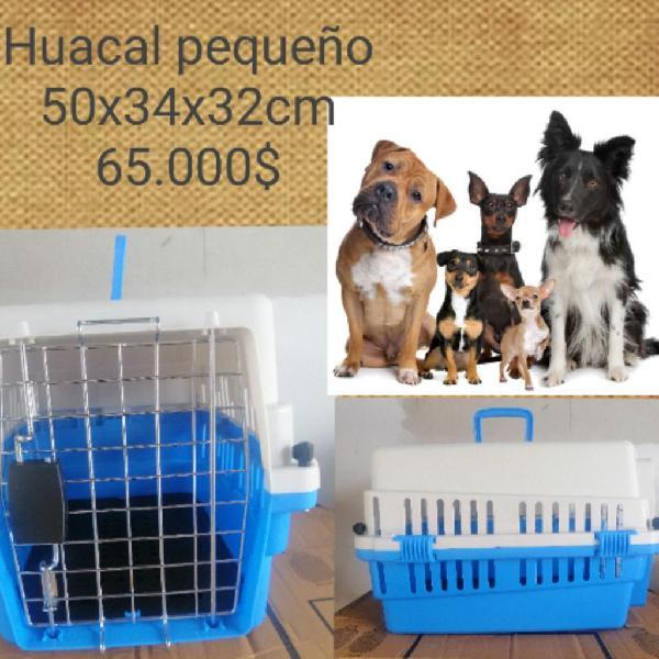 Huacales para perros