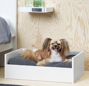 Camas para perros en madera diseño novedad