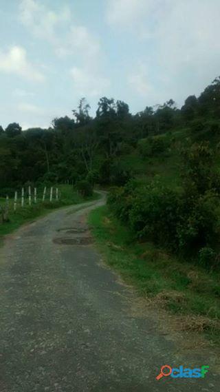 Se vende finca en la vega (Cundinamarca) 10 fanegadas 8