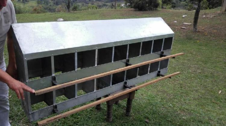 Nidos nidales ponederos para gallina