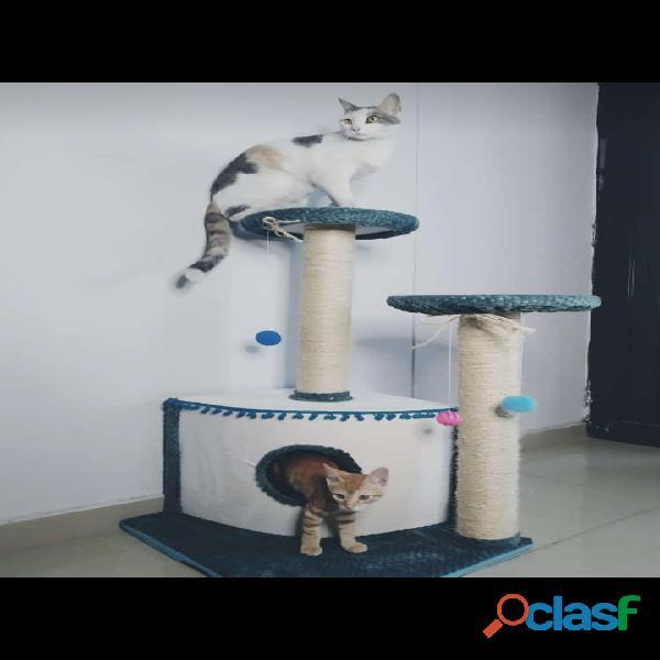 Gimnasios y rascadores para gatos