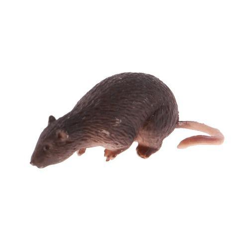 Modelo de ratón rata miniatura escala 1/6 accesorios de