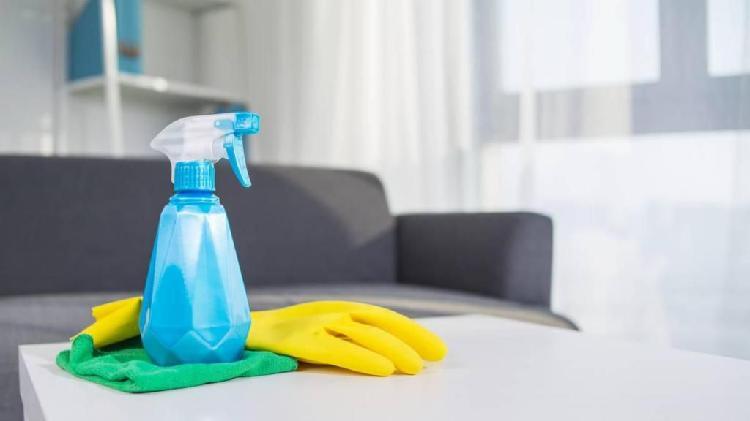 Niñera, días de limpieza, cuidado de personas mayores