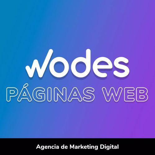 Pagina web profesional | diseño web | sitios ecommerce