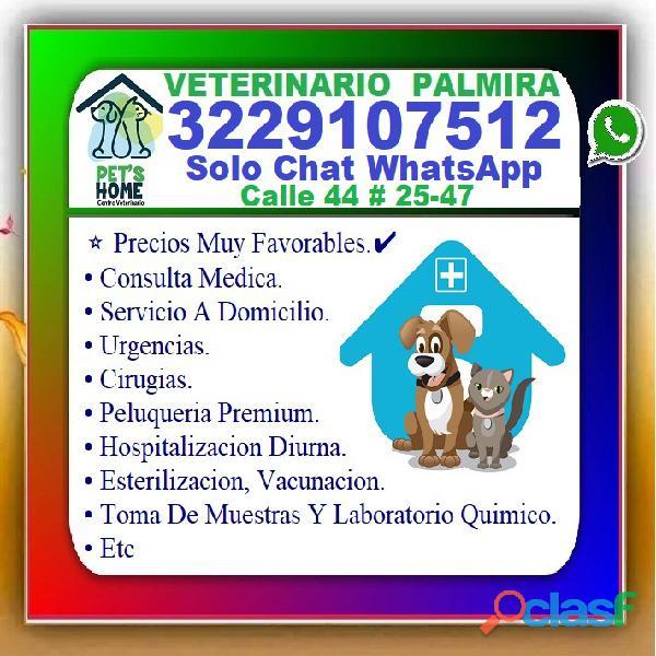 ⭐ veterinario palmira, veterinaria, esterilizacion, vacunacion, cirugias, examenes laboratorio, pelu