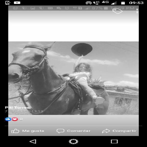 Clases de montar caballo