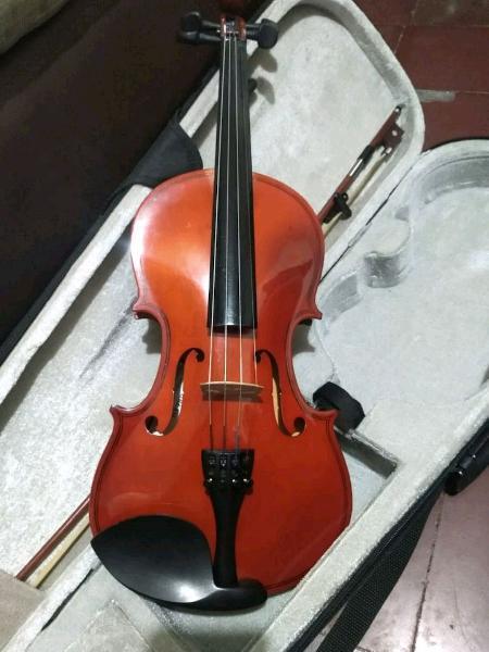 Violin 4/4 greko con accesorios.