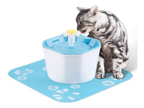 Dispensador de agua para gatos pingpin saludable e
