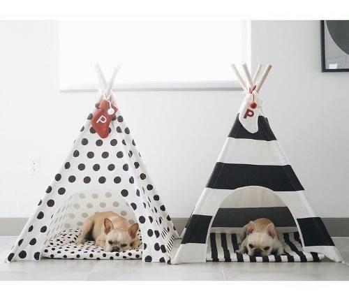 Casas camitas rascadores para perros gatos mascotas