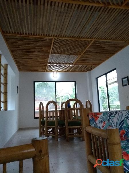 Bambú limpio y listo decoración cielorraso pérgolas