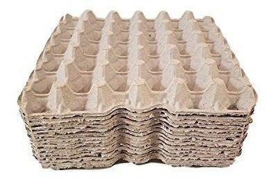 Pollo biodegradable huevos planos bandejas de huevos cartone