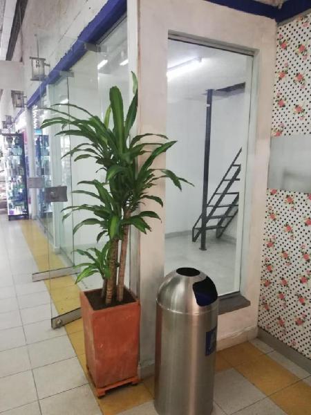 Renta local centro comercial platino plaza itagui -